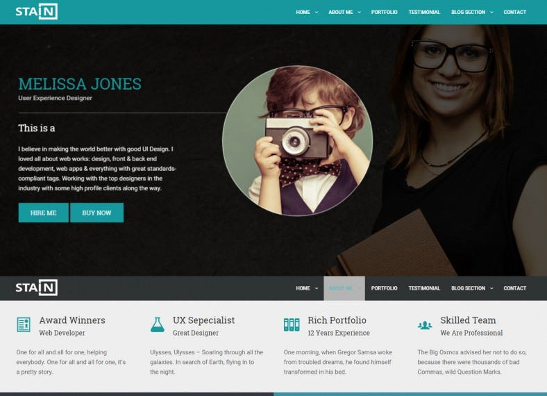 stain resume responsive wordpress theme 43 788x570