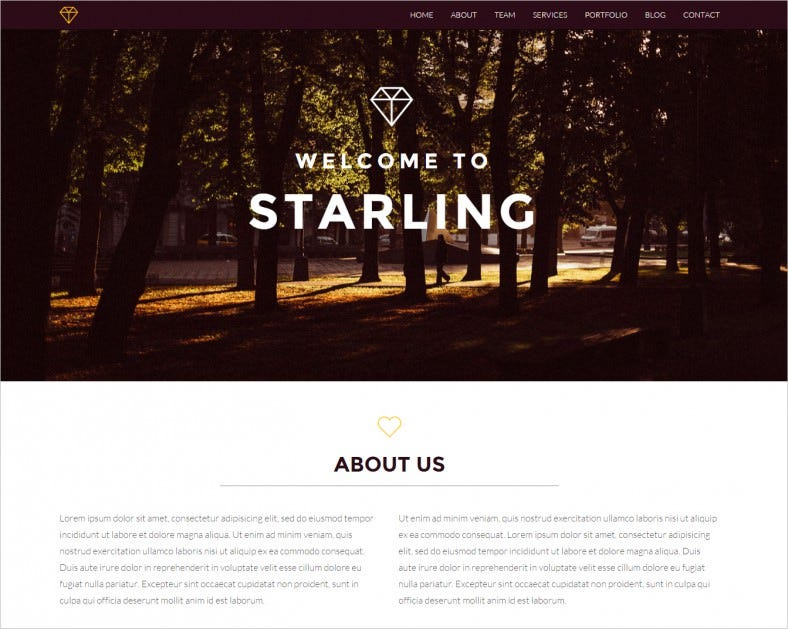 starling creative html5 template 8 788x630