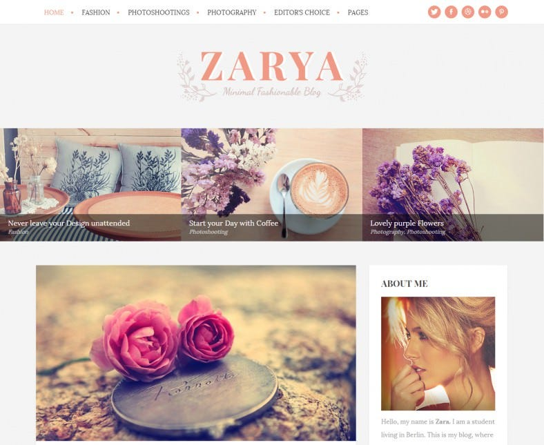 zarya personal wordpress blog theme 788x645