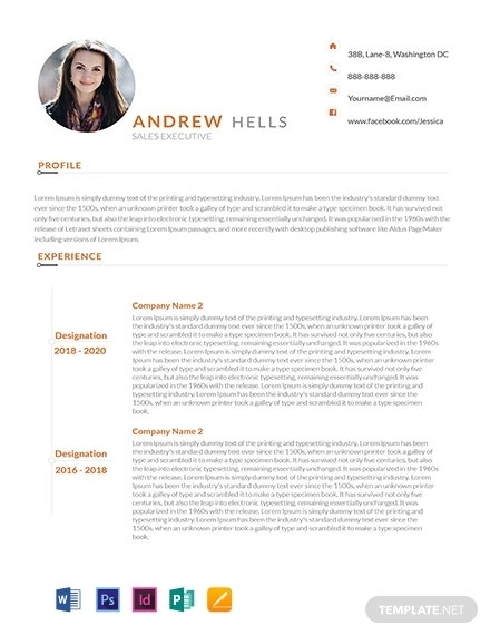 free sales executive resume