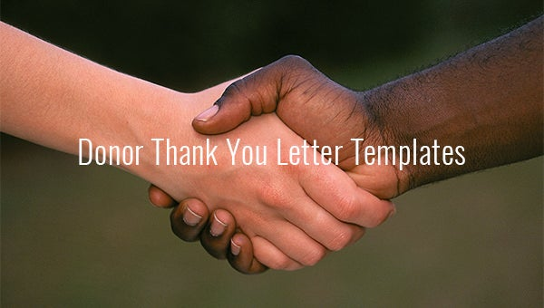 donor thank you letter templates