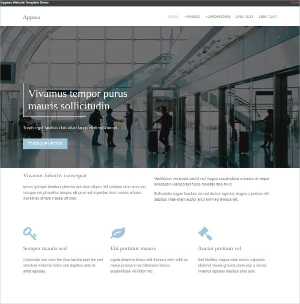 responsive html5 website templates themes free premium temp