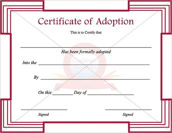 essay on adoption laws