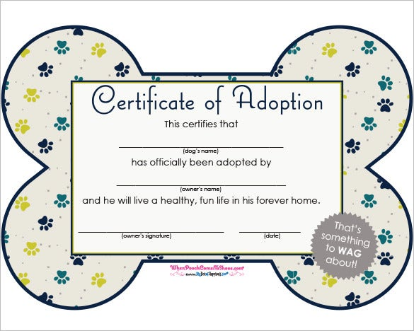 adoption certificate template 12 free pdf documents download