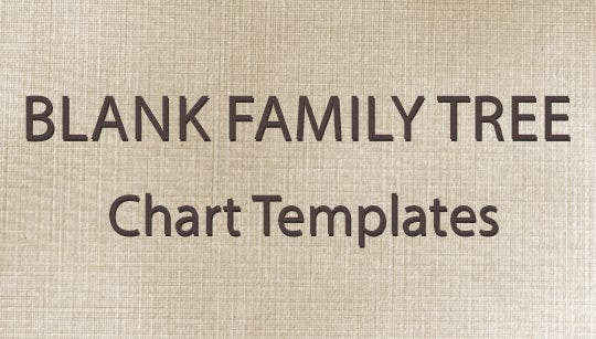 blank family tree chart template .