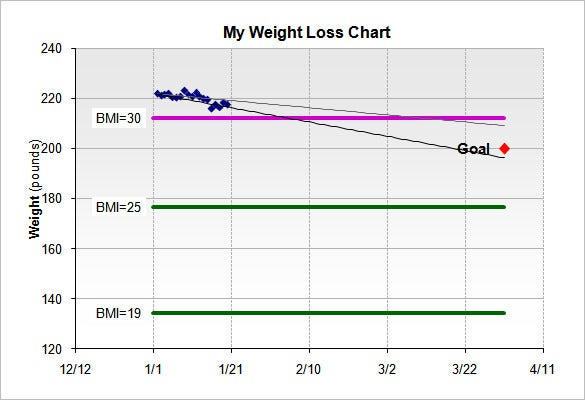 Weight Loss Chart Template   Free Word Excel Pdf Format