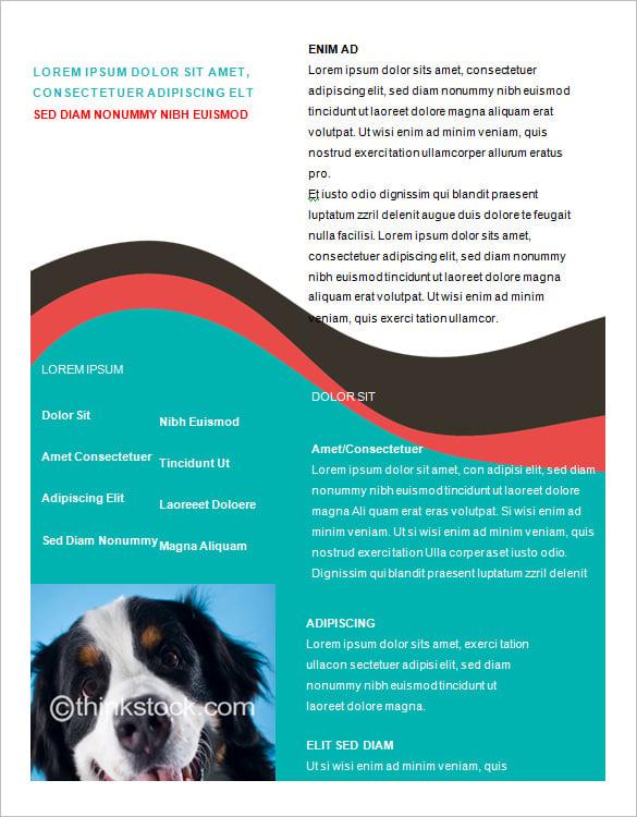 Doc.#600462: Sales Brochure Template Word – Brochures Office (+99 ...