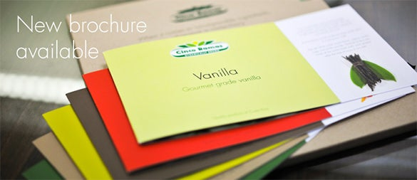 22 Beautiful PSD Product Brochure Templates – Product Brochure Template
