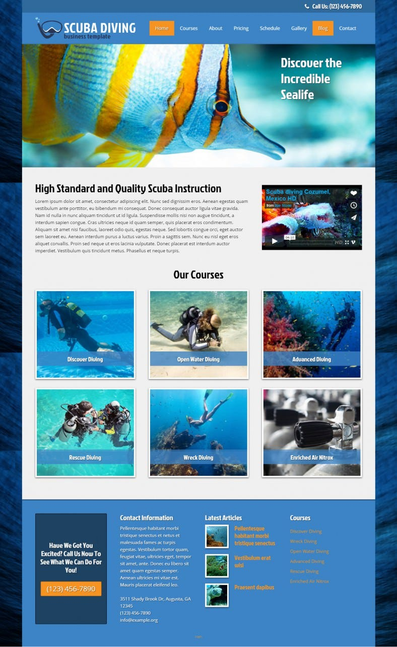 cool blue wordpress theme for scuba diving 788x1285
