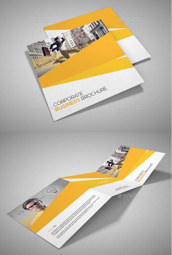 corporate company brochures bundle