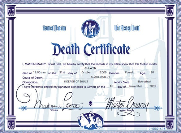 7 Death Certificate Templates Free Word PDF Documents Download – Word Template Certificate