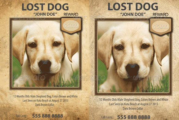 Doc.#598644: Lost Pet Poster Template – 20 Nice Lost Pet Flyer