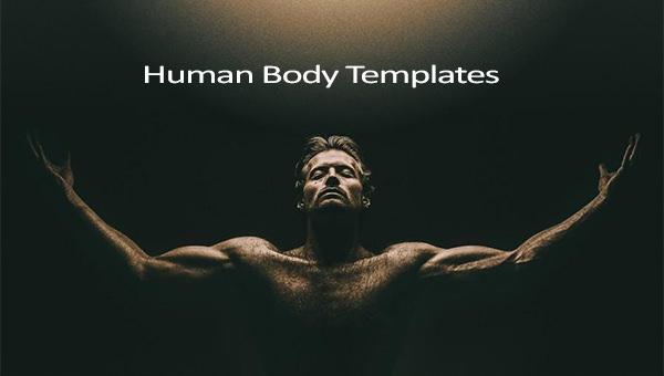 humanbodytemplate