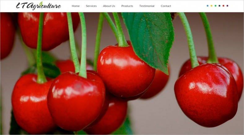 lt agriculture onepage fruits vegetables joomla template 788x437