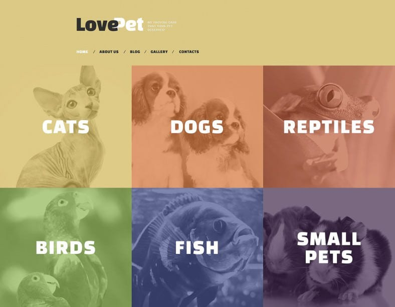 Modern Pet Store Drupal Theme