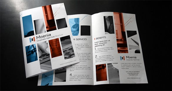 moenia bi fold corporate brochure template