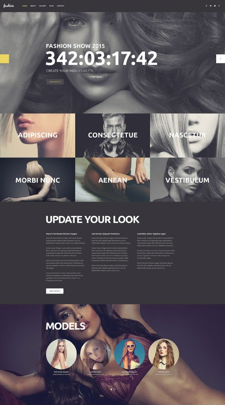 Parallax Effect Integrated Wp Template for Fashion