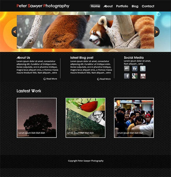 portfolio website free psd website template