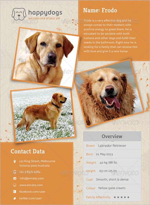 11 psd lost dog flyer templates free premium templates for Dog adoption flyer template