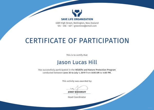 program participation certificate template2