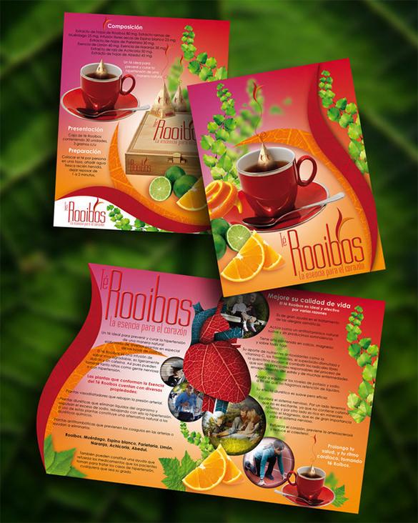 rooibos brochure template