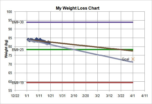 Sample Weight Loss Chart Template Kgs  Graphs And Charts Templates