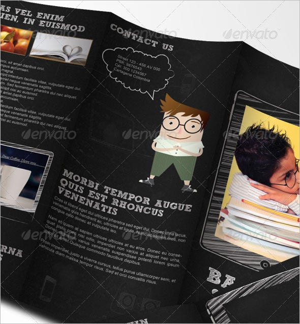 school brochure tri fold brochure