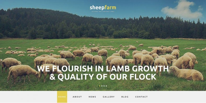 sheep farm joomla template 788x396