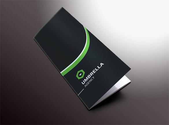 sleek corporate tri fold brochure