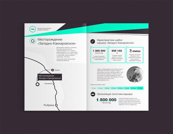 tpnk company brochure template