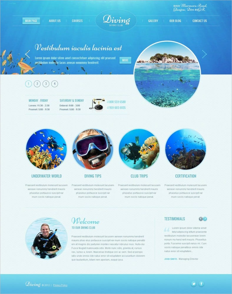 White & Blue Diving WordPress Blog Theme