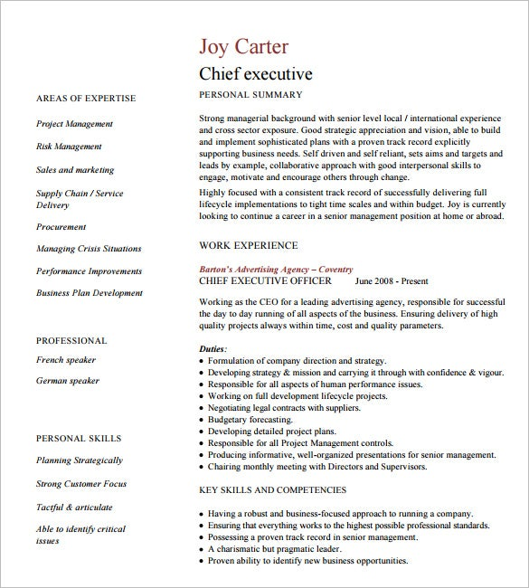 executive resume format executive cv template - Executive Resume Template