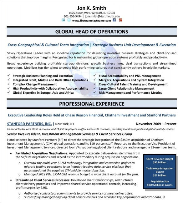 Free Executive Resume Templates  Senior Executive Resume Examples