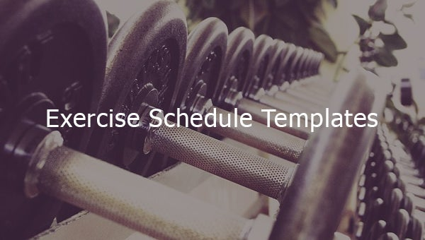 exercise schedule templates