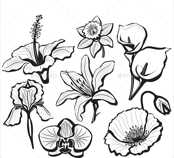 Flower Petal Template 20 Free Word PDF Documents Download – Flower Petal Template