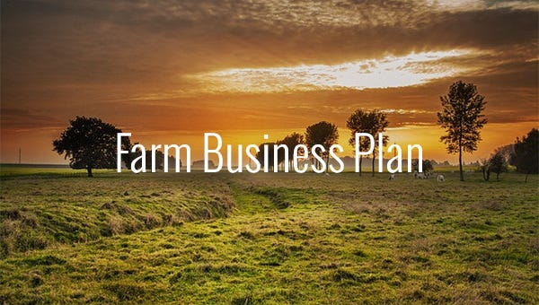 farmbusinessplan1