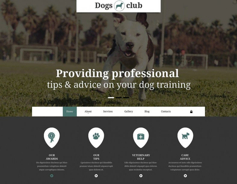animated portfolio integrated joomla template for pets club 788x613