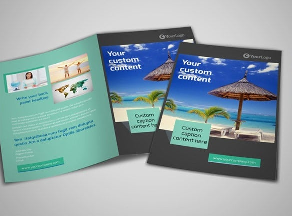 beautiful brochure fro world travel agent