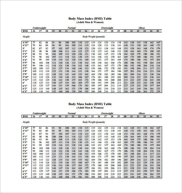 Bmi Chart Template   Free Sample Example Format Download
