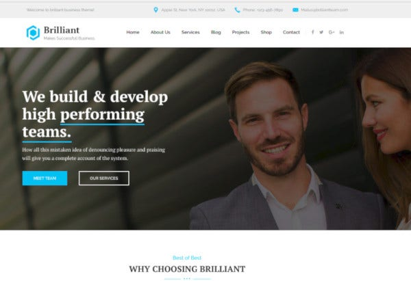 business consulting professional services joomla template