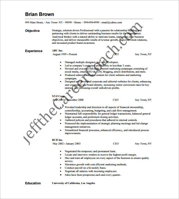 Ceo Resume Sample Ceo Resume Example Sample Chief Executive