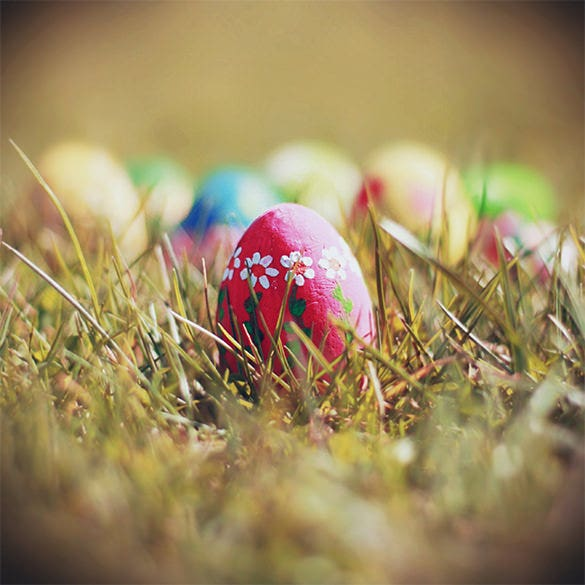 designed easter egg in grass template