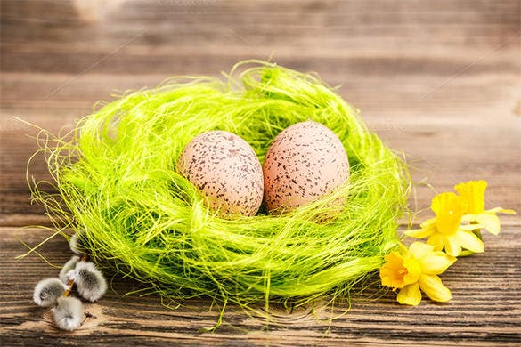 easter eggs in the nest template 5