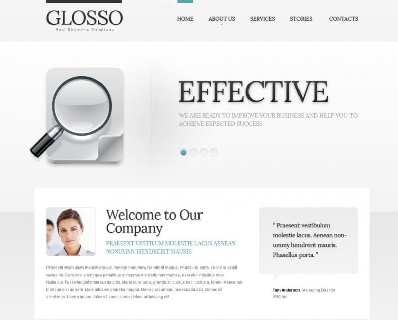 Effective SEO Joomla Website Template