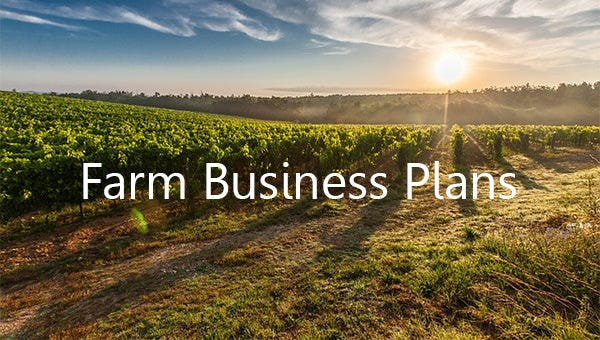 Farm Business Plan Template 16 Word Excel Pdf Format Download