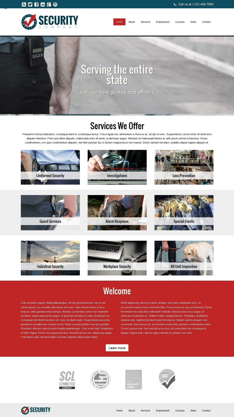 flexible wp theme for security service businesses 788x1404