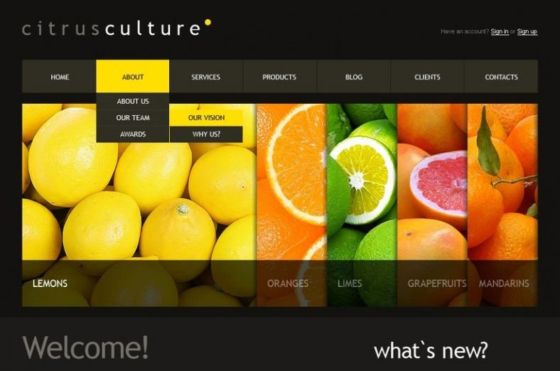 food store joomla template 788x522