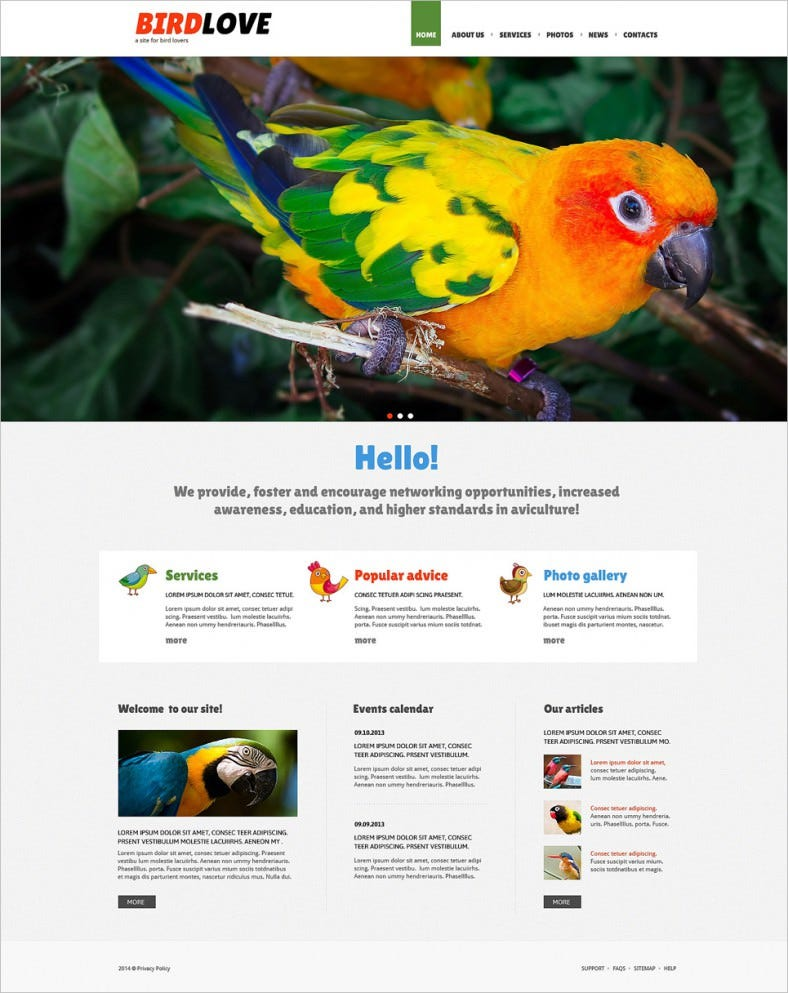 Gallery Style Birds Shelter Joomla Template