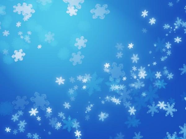 hi quality snow flakes brushes