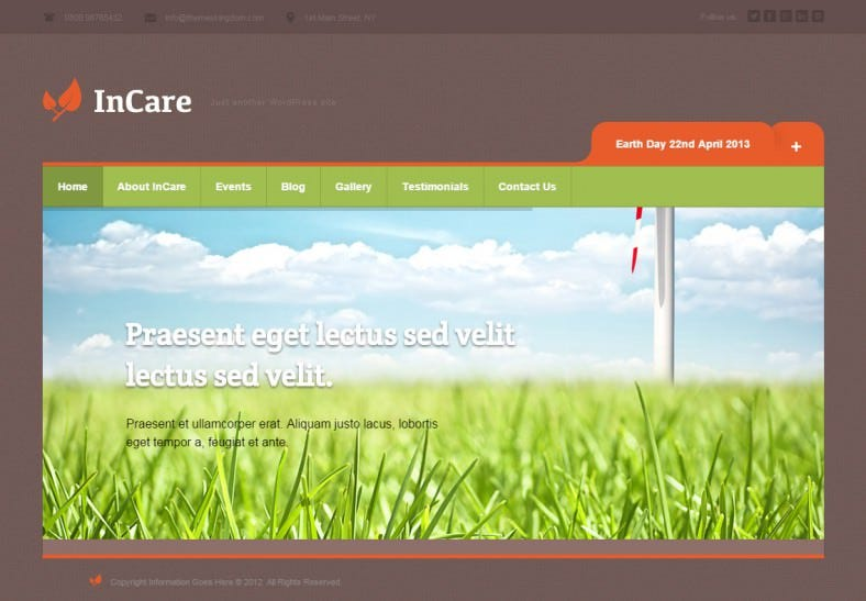 incare responsive wordpress theme 788x547